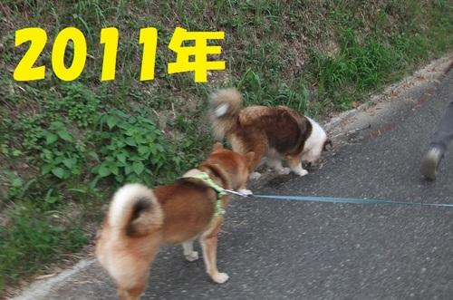 DSCF5029.jpg