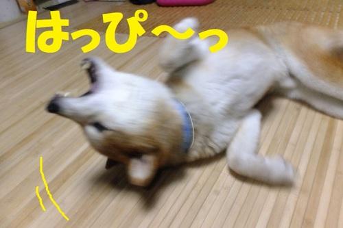 DSCF9576.JPG